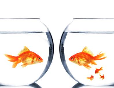 La réforme du divorce arrive : Tenez-vous prêt !